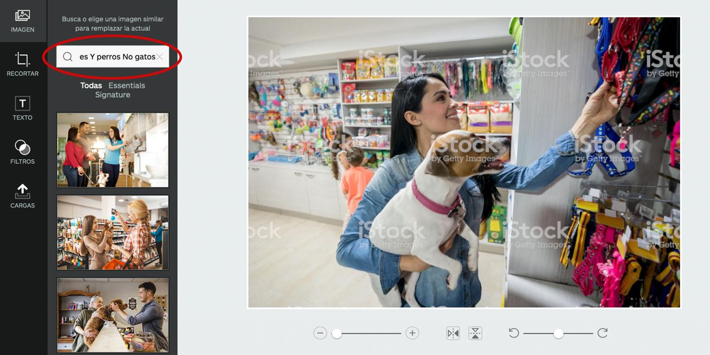 iStock Editor 2019-12-10.jpg
